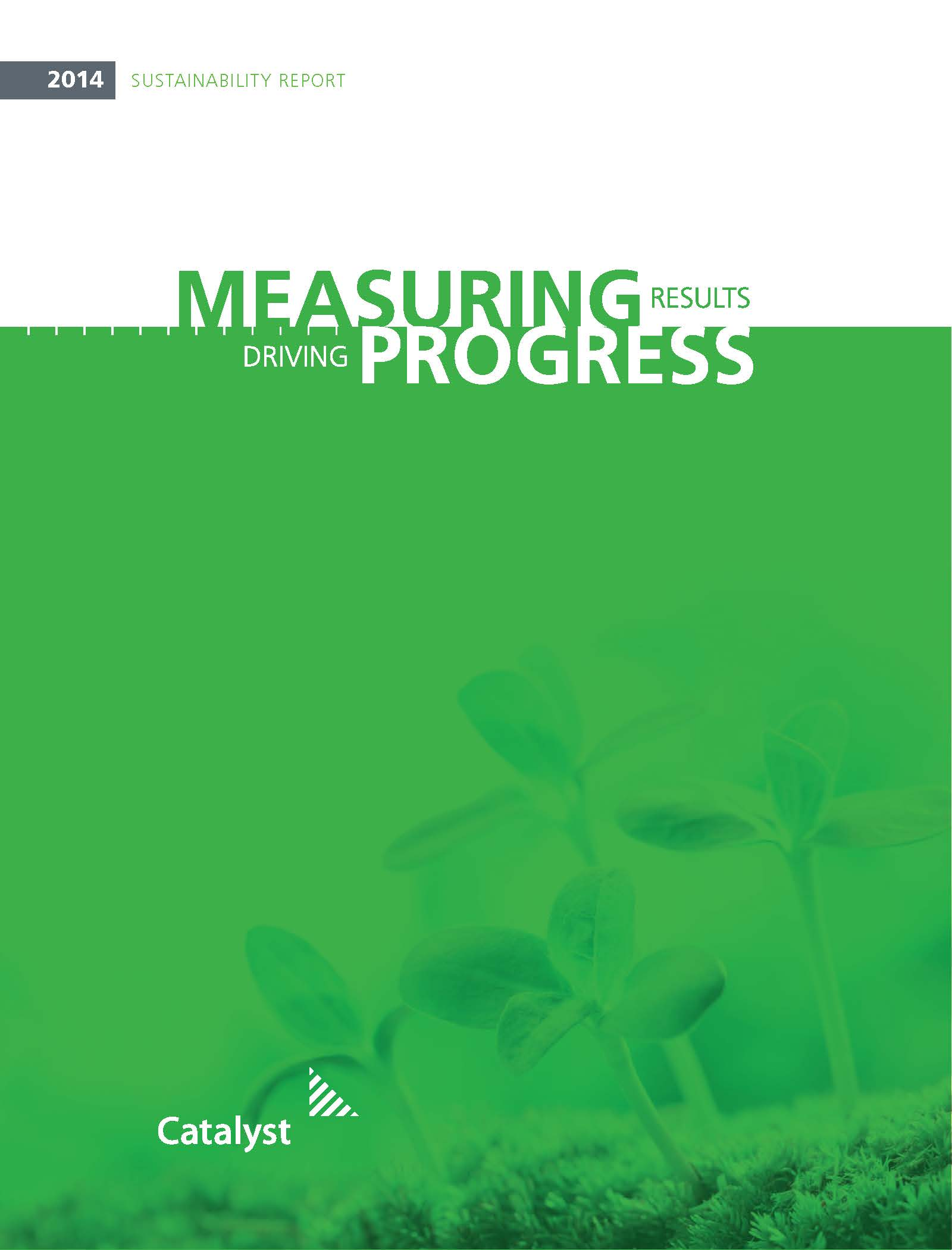 essay on sustainability reporting Free essay: contents executive summary 1 introduction 2 defining sustainability  2 what sustainability means to woolworths 3 corporate.